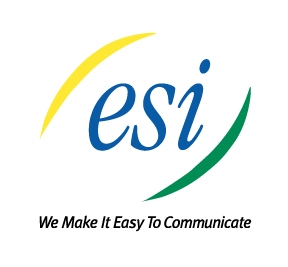 ESI Awards Top Channel Partners With Elite Status