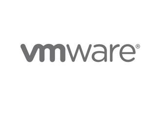 VMware Execs Spotlight Consulting And Integration Partner Program